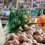 初めての野菜!無料知育アプリ「こども野菜図鑑」を紹介します