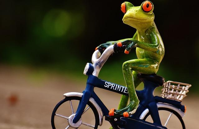 関西サイクルスポーツセンターの9つの割引方法と基本料金まとめ【自転車、プール】