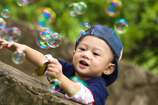 屋久島環境文化村センターの割引方法と基本料金まとめ