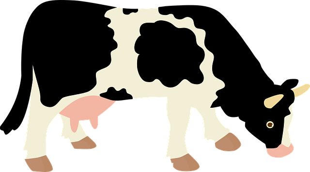 【決定版!】成田ゆめ牧場の割引方法(クーポン)と基本料金まとめ