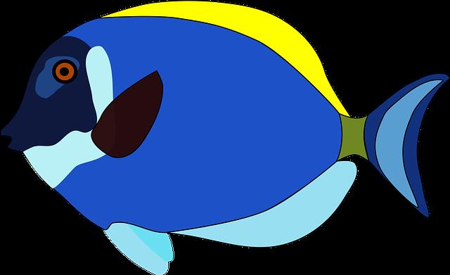 宮島水族館 みやじマリンの3つの割引方法(クーポン)と基本料金まとめ
