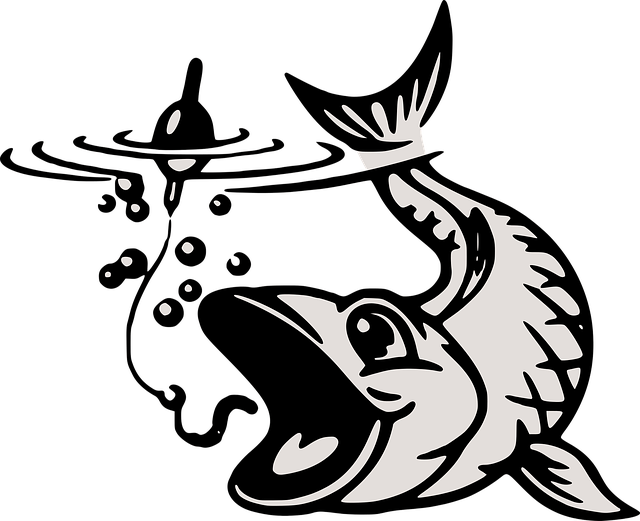 東京タワー水族館の5つの割引き方法(クーポン)と基本料金まとめ