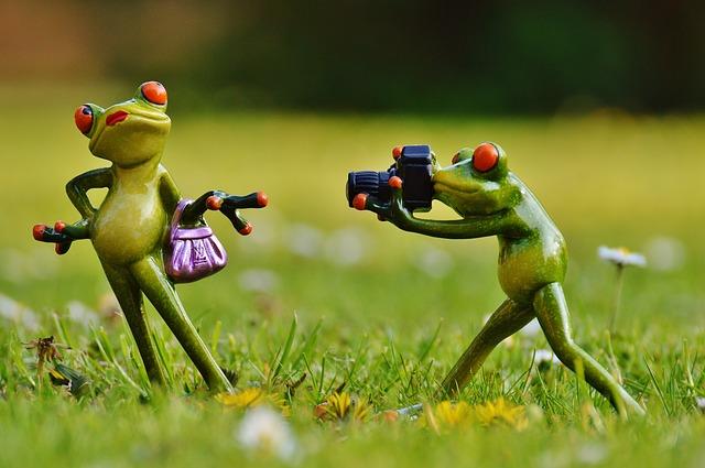 ローソンで写真プリントのやり方!操作手順を画像でわかりやすく紹介