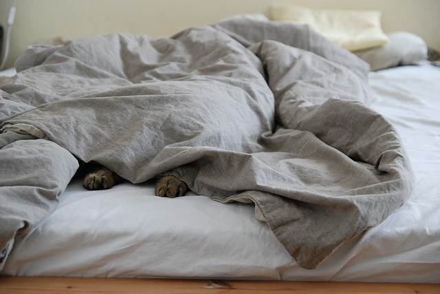 シーツの洗濯頻度はどうしてる?夏と冬で使える秘密兵器も合わせて紹介