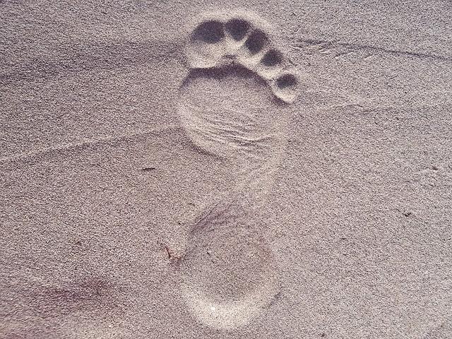 一万歩って何キロ?距離や時間、消費カロリーなどトコトン調査
