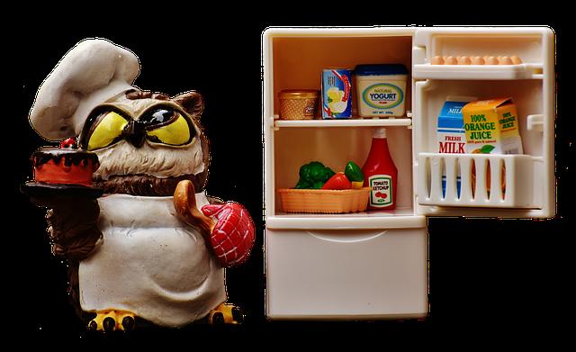冷蔵庫のカビ掃除の順番はこれ!カビの原因も合わせてチェック!