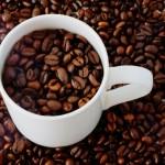消臭や肥料などに再利用!コーヒーかすの意外な使い道3選