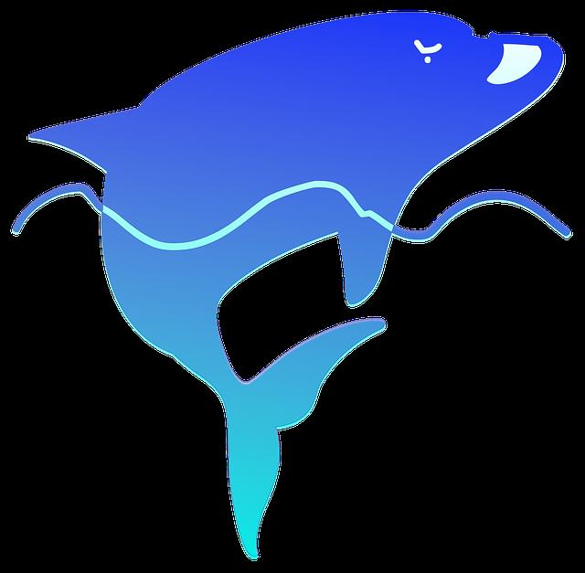 【中学生以下無料も!】のとじま水族館の7つの割引方法(クーポン)と基本料金まとめ