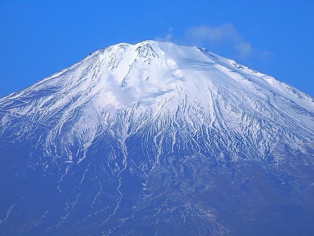 【無料券もあり!】富士花鳥園の11個の割引方法と基本料金まとめ
