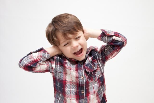近所 の 子供 が うるさい 【社会】高齢者のクレームで公園から子供が消える「歪な環境問題」へ...