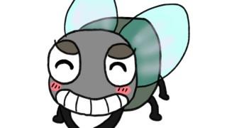 網戸でも虫が入る時の5つの対策法!網戸の向きは正しいですか?
